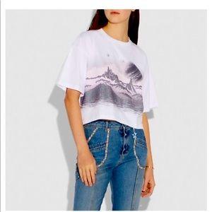 Coach landscape crop tshirt